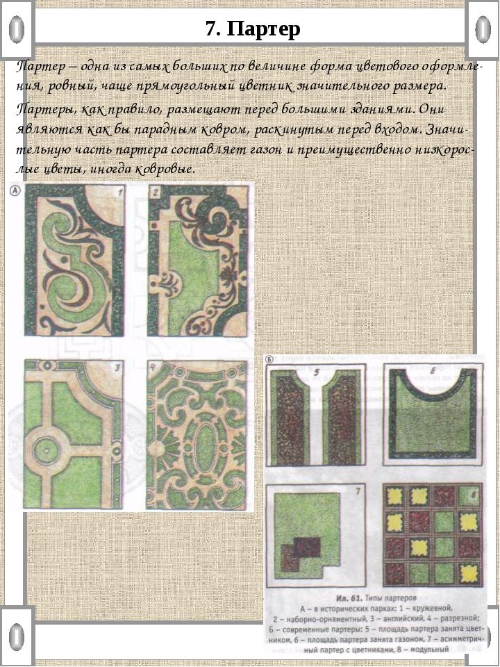 7. Партер Партер – одна из самых больших по величине форма цветового оформле-...