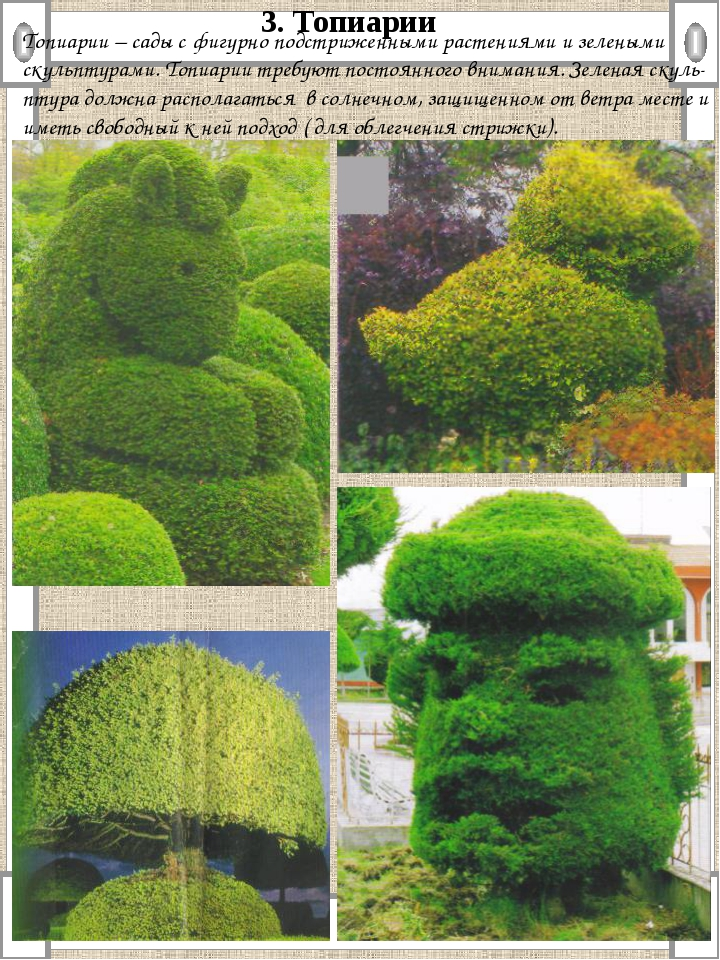 Топиарии – сады с фигурно подстриженными растениями и зелеными скульптурами....