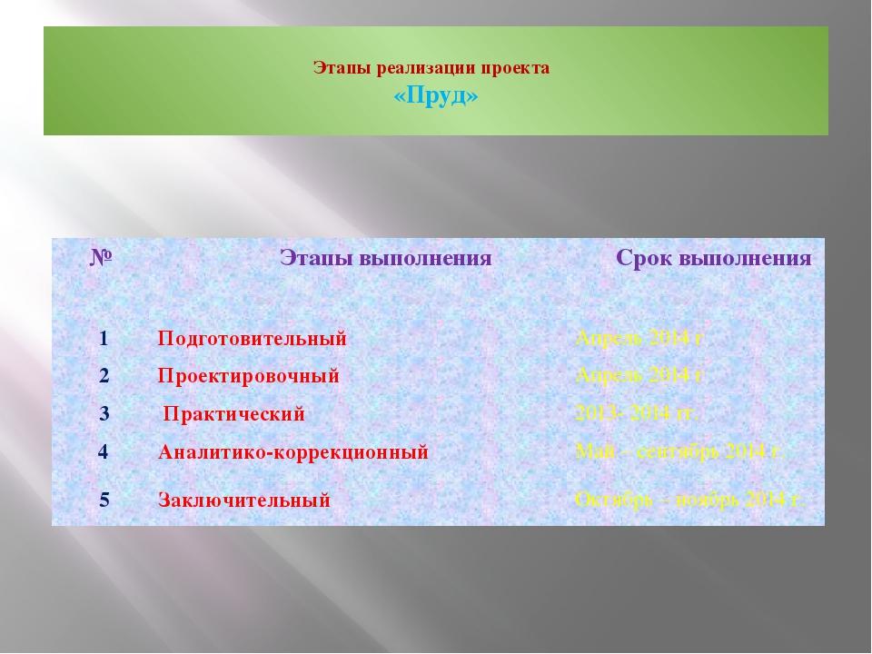 Этапы реализации проекта «Пруд» № Этапы выполнения Срок выполнения 1 Подгот...