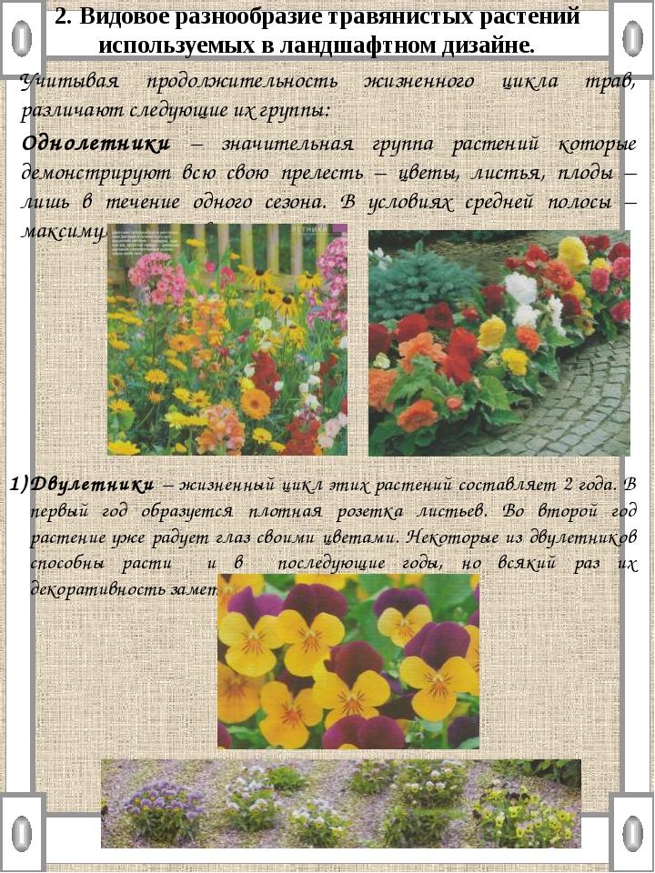 2. Видовое разнообразие травянистых растений используемых в ландшафтном дизай...
