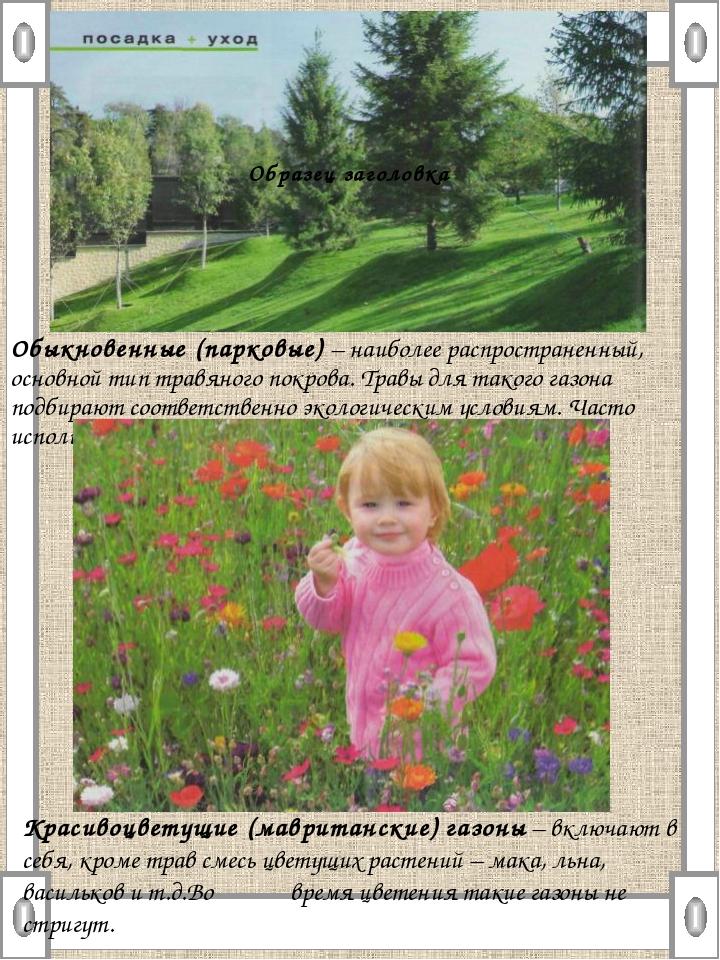 Обыкновенные (парковые) – наиболее распространенный, основной тип травяного п...