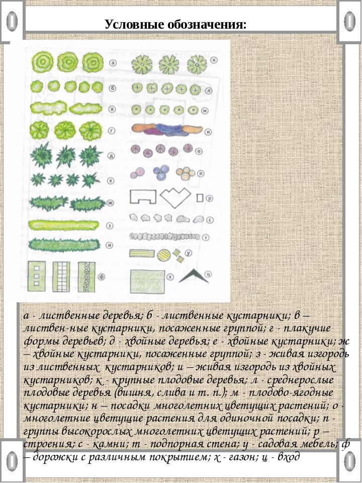 Условные обозначения: а - лиственные деревья; б - лиственные кустарники; в –...