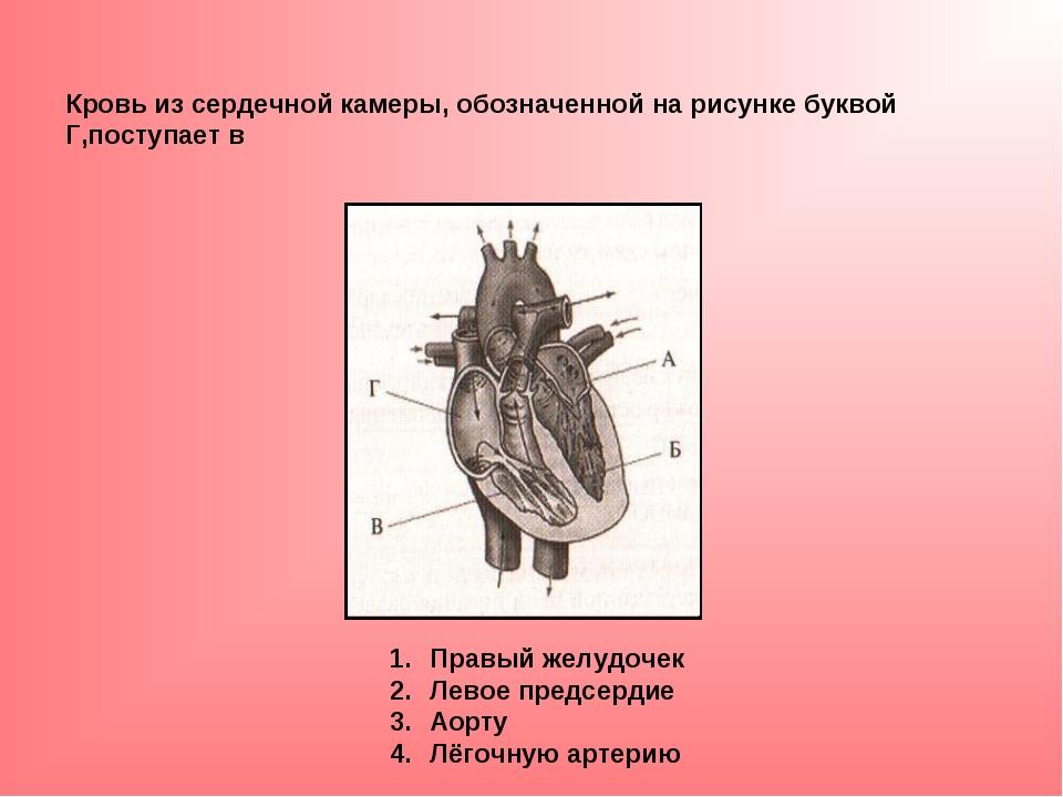Кровь из сердечной камеры, обозначенной на рисунке буквой Г,поступает в Правы...