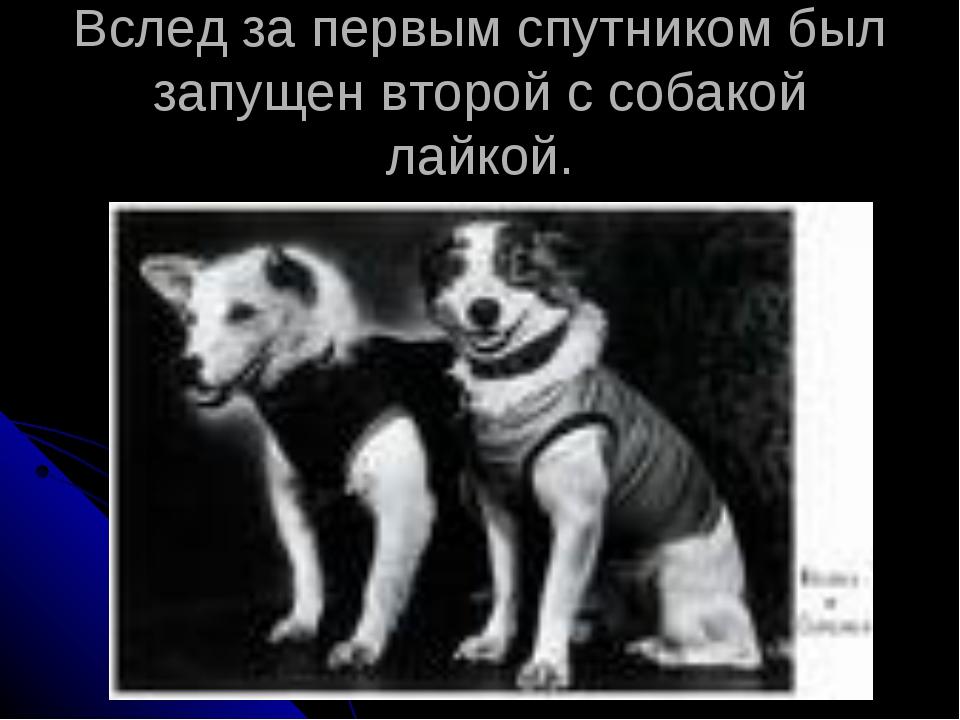 Вслед за первым спутником был запущен второй с собакой лайкой.