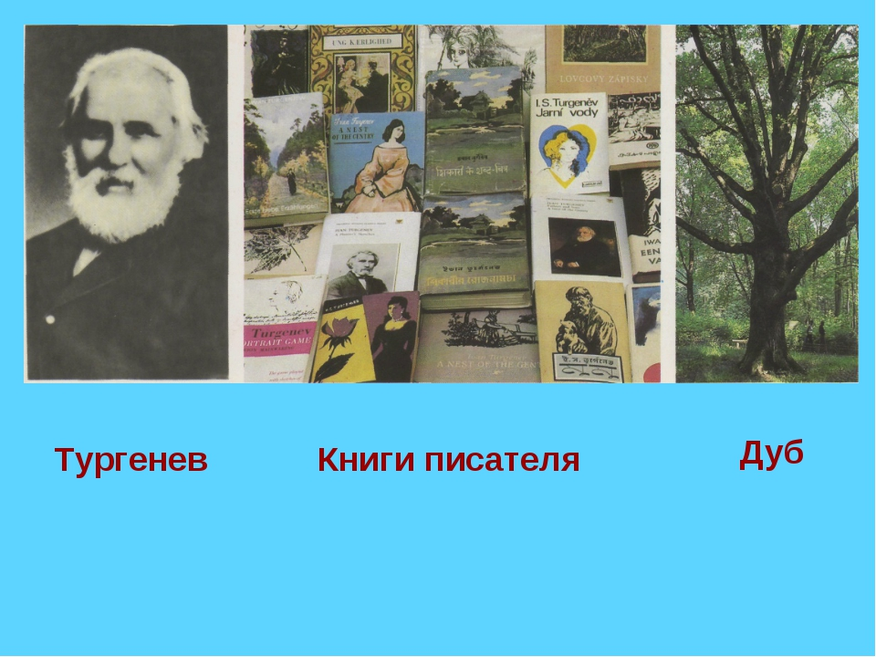 Тургенев Книги писателя Дуб