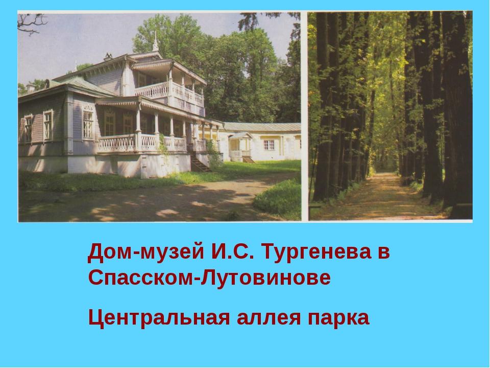 Дом-музей И.С. Тургенева в Спасском-Лутовинове Центральная аллея парка