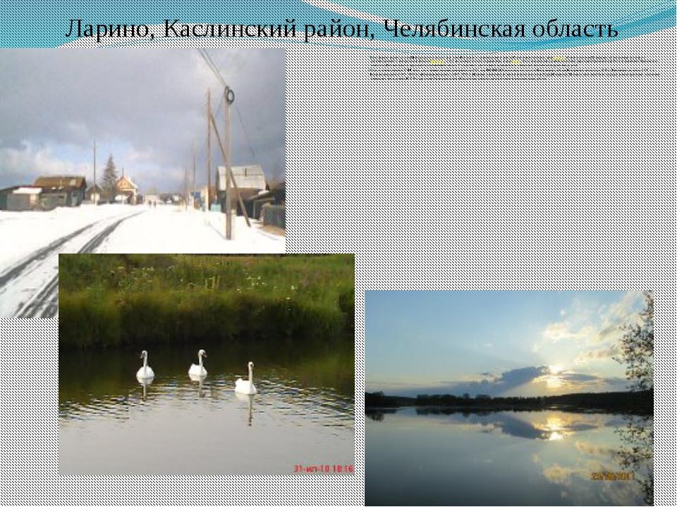 Ларино, Каслинский район, Челябинская область Село Ларино входит в состав Шаб...