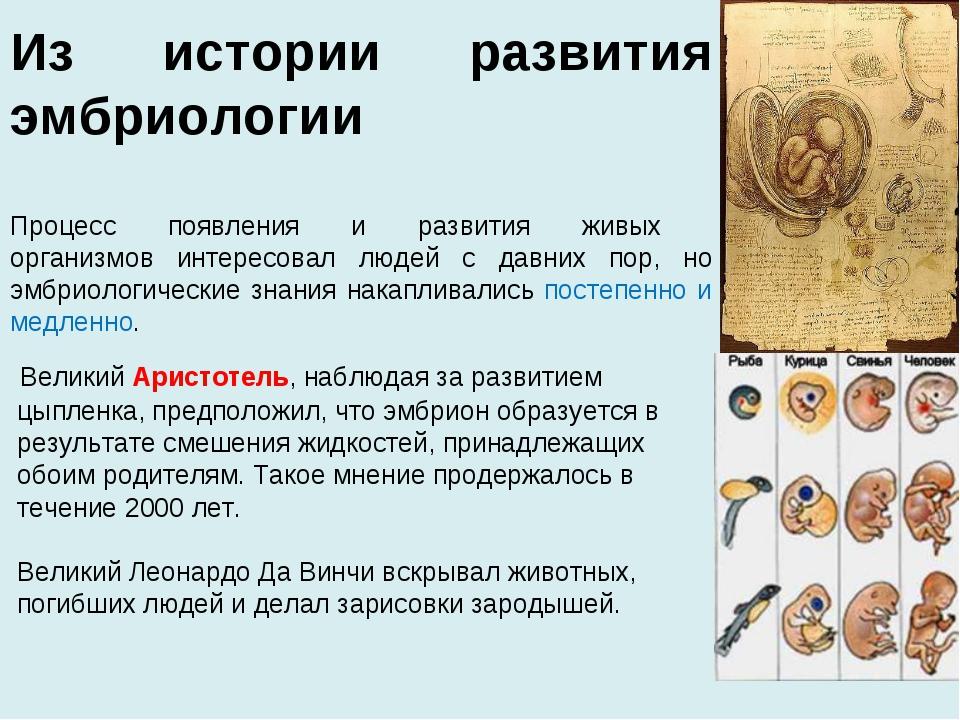 Из истории развития эмбриологии Процесс появления и развития живых организмов...