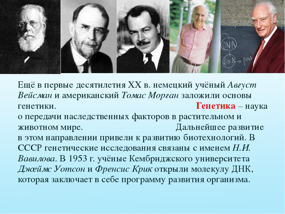 Ещё в первые десятилетия XX в. немецкий учёный Август Вейсман и американский...