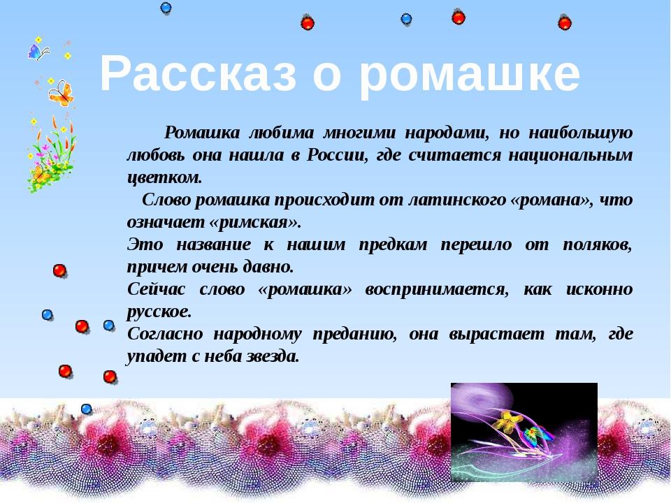 Ромашка любима многими народами, но наибольшую любовь она нашла в России, гд...