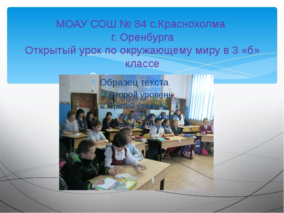 МОАУ СОШ № 84 с.Краснохолма г. Оренбурга Открытый урок по окружающему миру в...