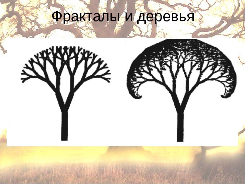 Фракталы и деревья