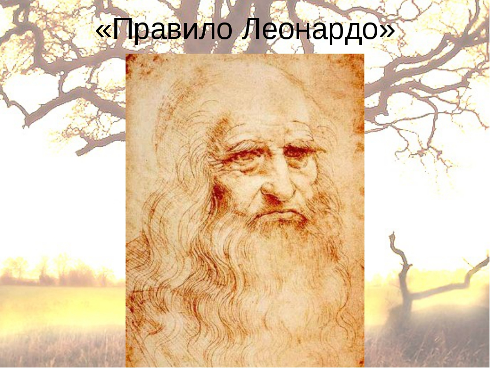 «Правило Леонардо»