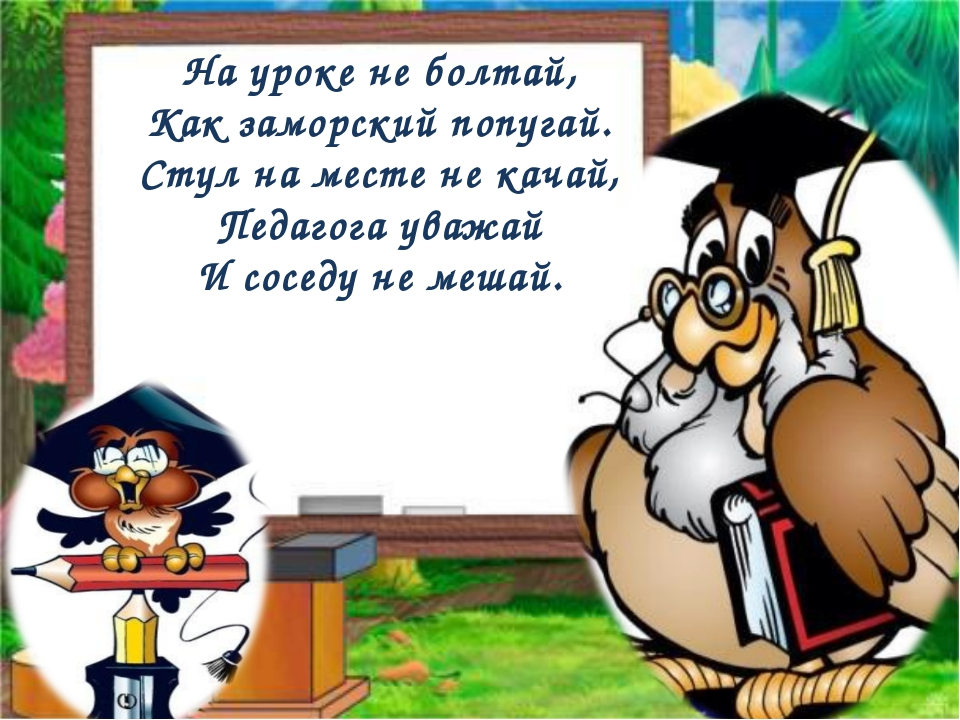 На уроке не болтай, Как заморский попугай. Стул на месте не качай, Педагога у...
