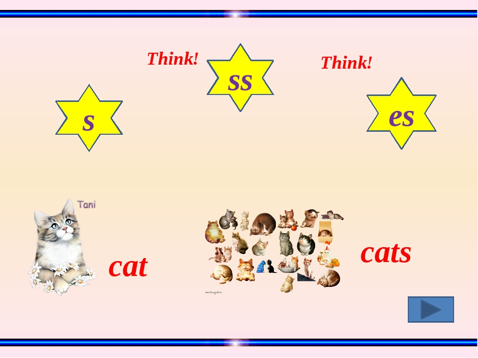 cat cats s ss es Think! Think!