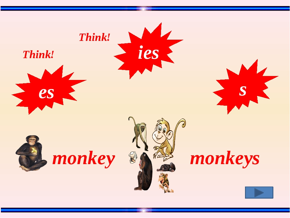 monkey monkeys s es Think! Think! ies