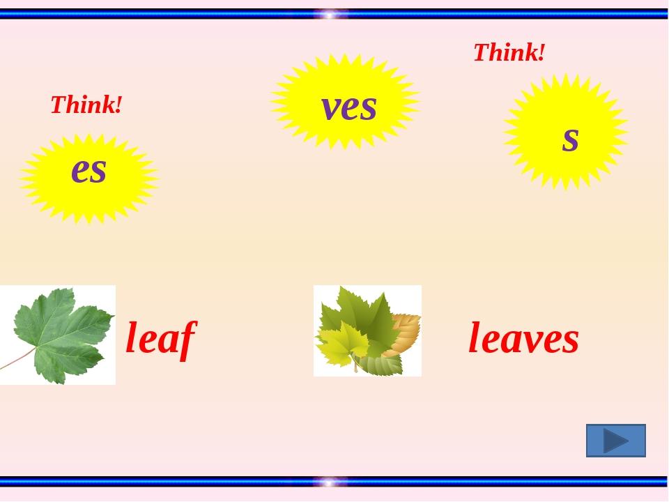 leaf leaves Think! Think! es ves s