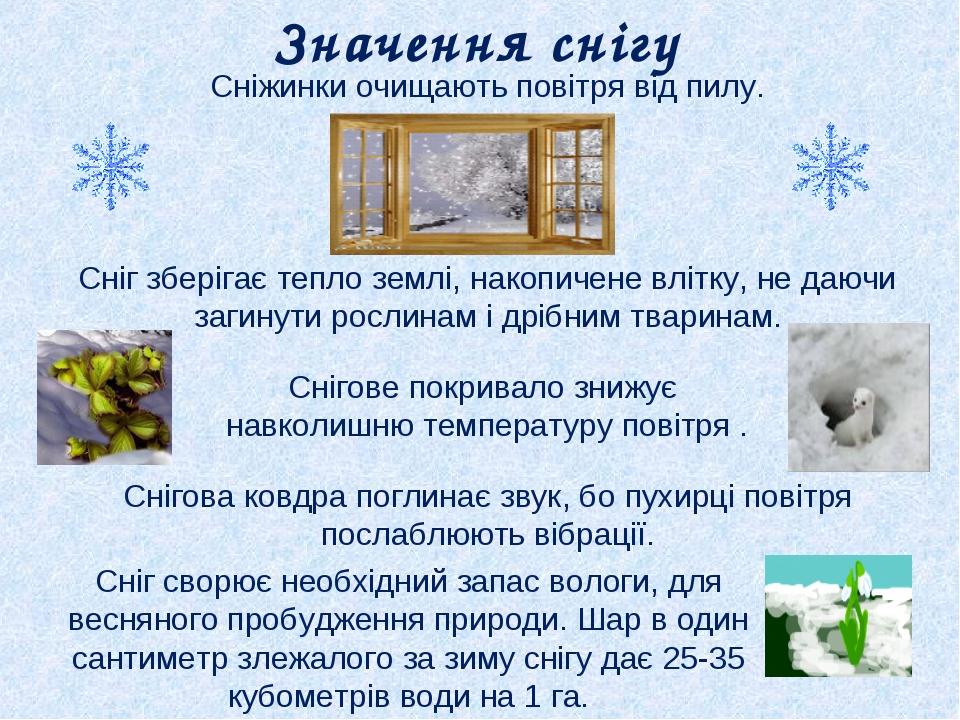 Сніжинки очищають повітря від пилу. Сніг зберігає тепло землі, накопичене влі...