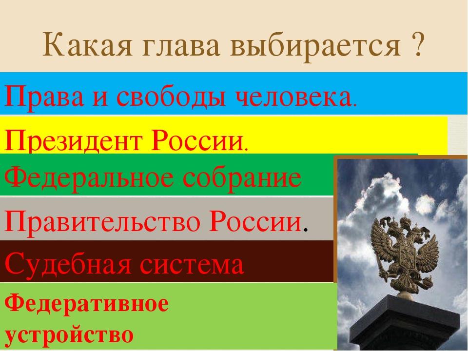 Какая глава выбирается ? Права и свободы человека. Президент России. Федераль...