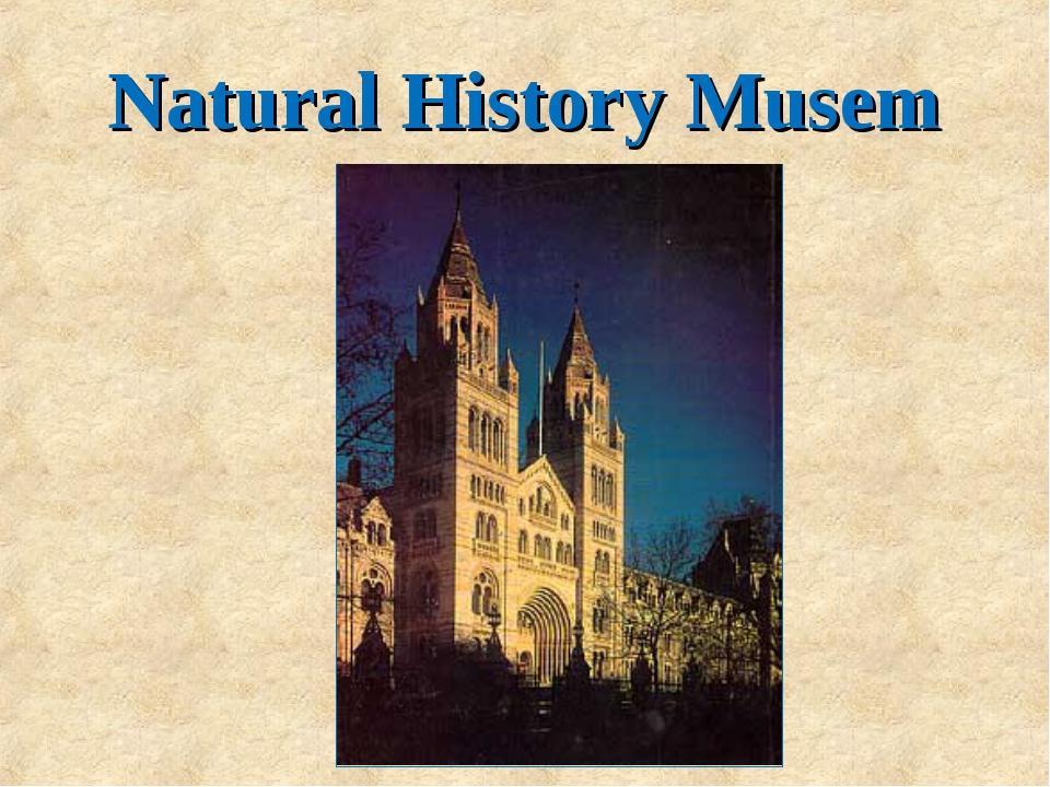 Natural History Musem