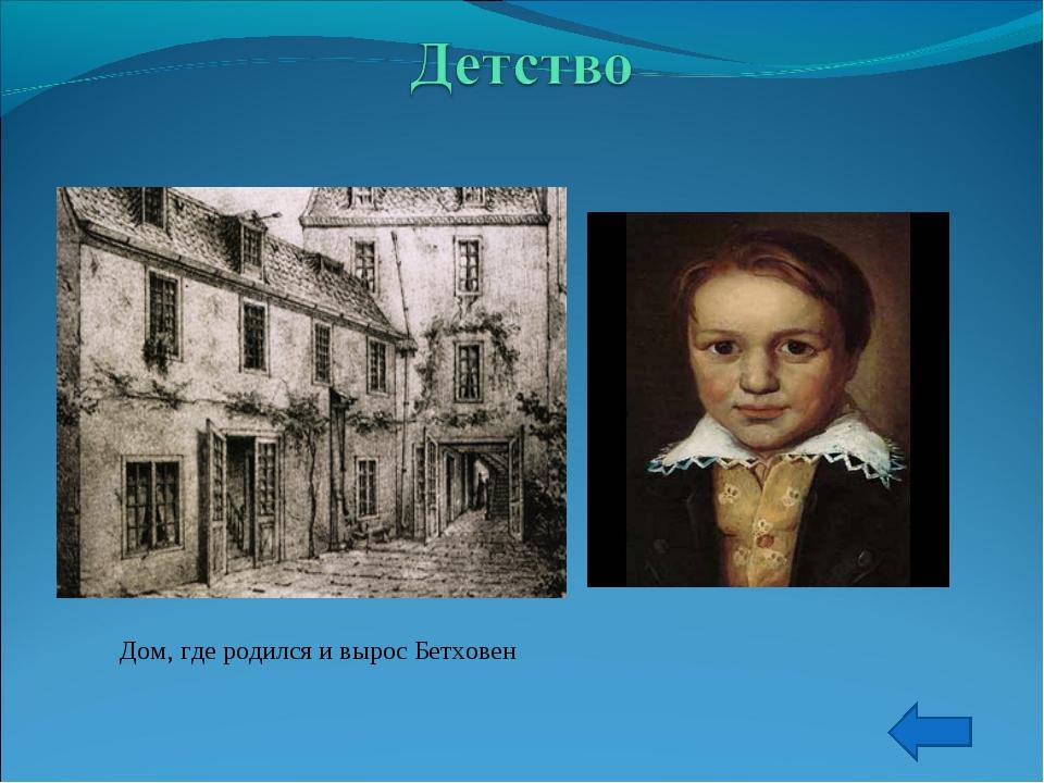 Дом, где родился и вырос Бетховен