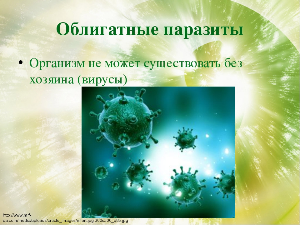 Облигатные паразиты Организм не может существовать без хозяина (вирусы) http:...