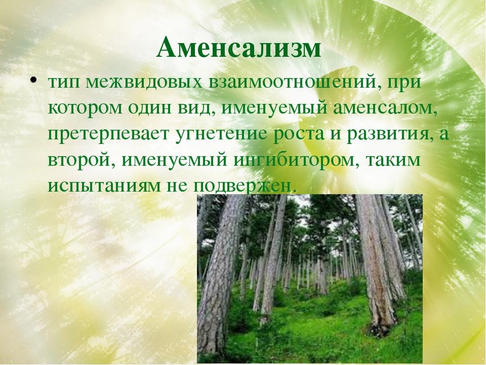 Аменсализм тип межвидовых взаимоотношений, при котором один вид, именуемый ам...