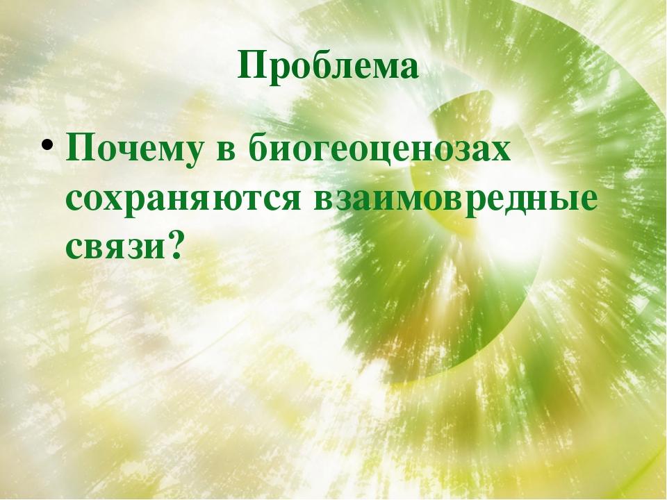 Проблема Почему в биогеоценозах сохраняются взаимовредные связи?