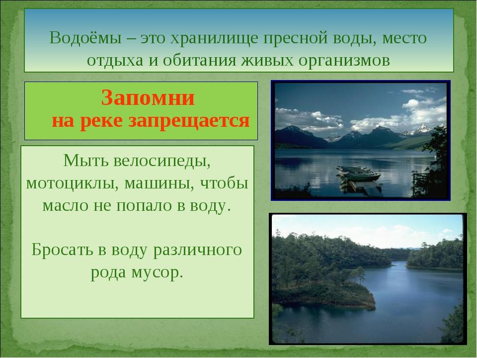 Водоёмы – это хранилище пресной воды, место отдыха и обитания живых организмо...