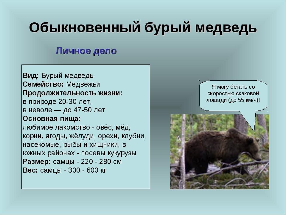 Обыкновенный бурый медведь Я могу бегать со скоростью скаковой лошади (до 55...