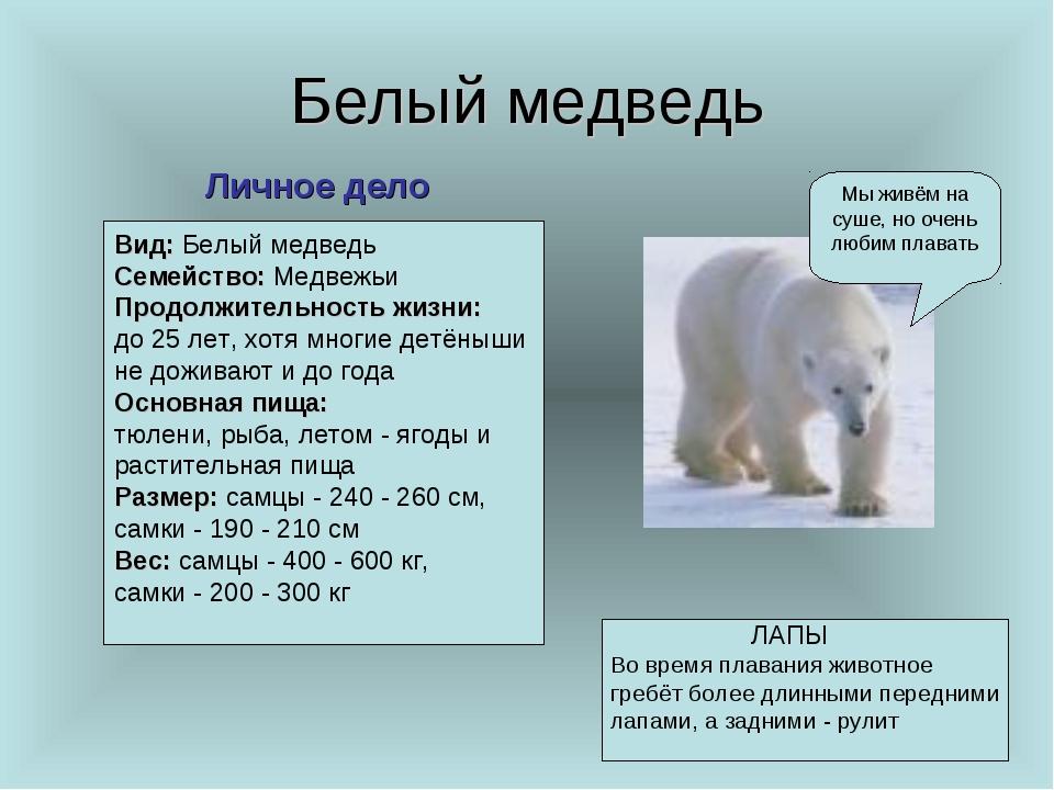 Белый медведь Мы живём на суше, но очень любим плавать Личное дело Вид: Белый...