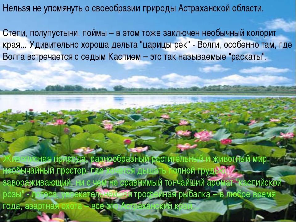 Живописная природа, разнообразный растительный и животный мир, необычайный пр...