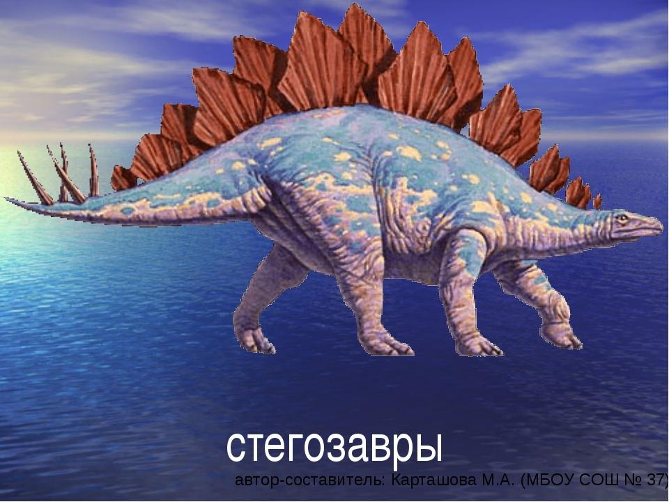 стегозавры автор-составитель: Карташова М.А. (МБОУ СОШ № 37)