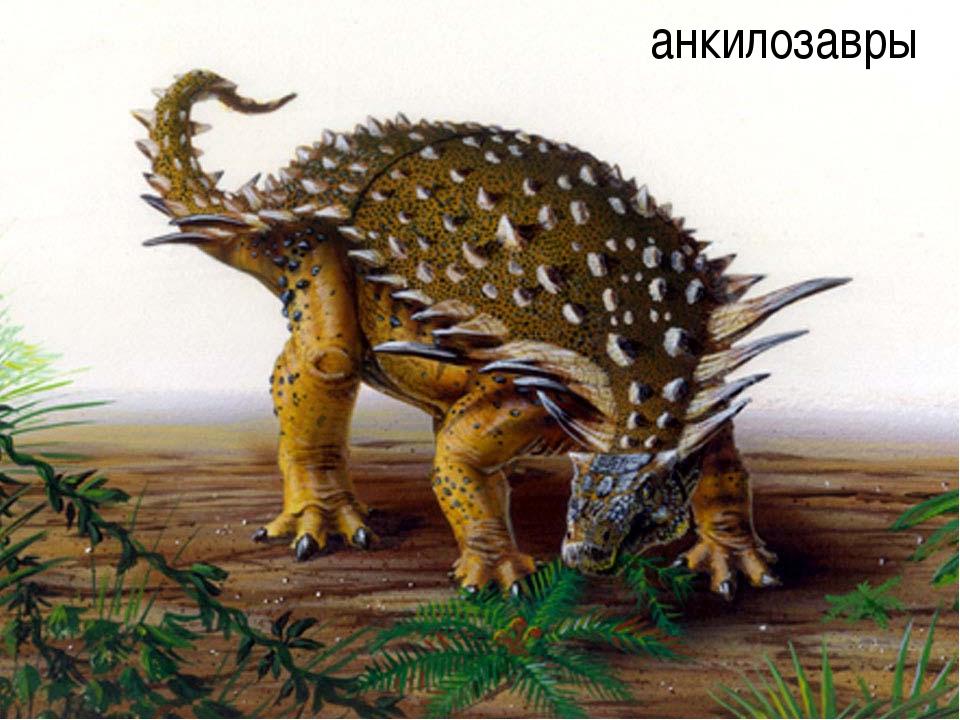 анкилозавры автор-составитель: Карташова М.А. (МБОУ СОШ № 37)