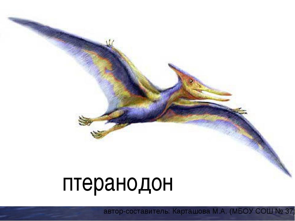 птеранодон автор-составитель: Карташова М.А. (МБОУ СОШ № 37)
