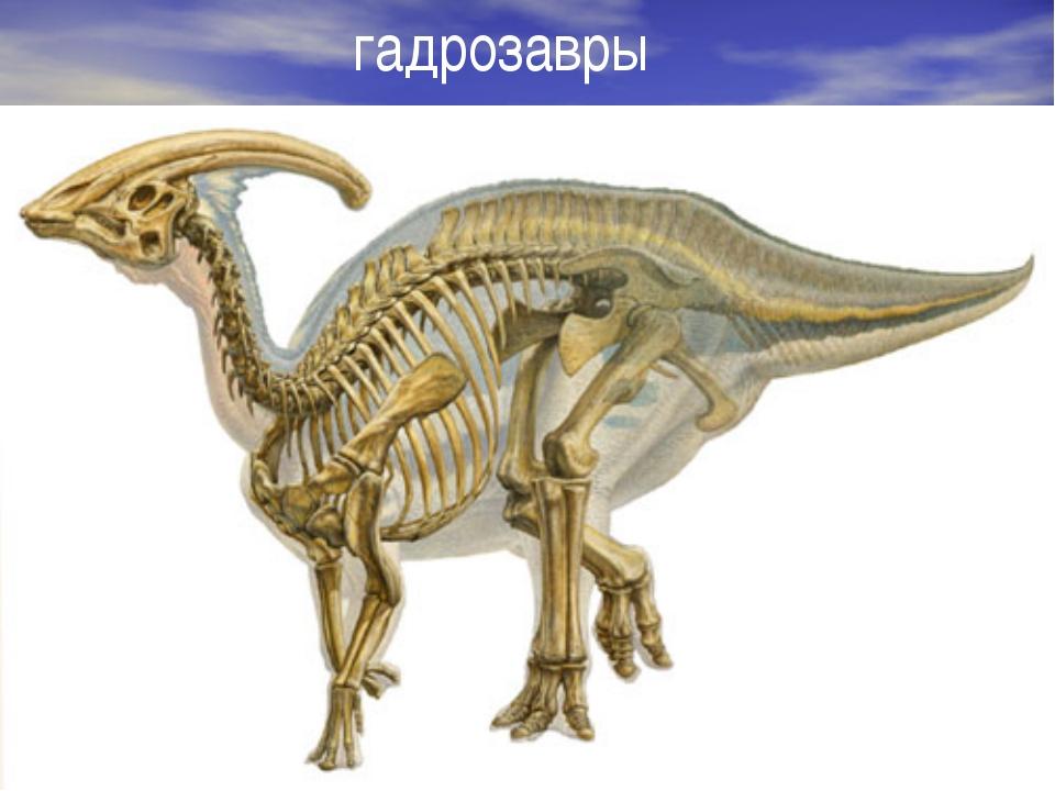 гадрозавры автор-составитель: Карташова М.А. (МБОУ СОШ № 37)