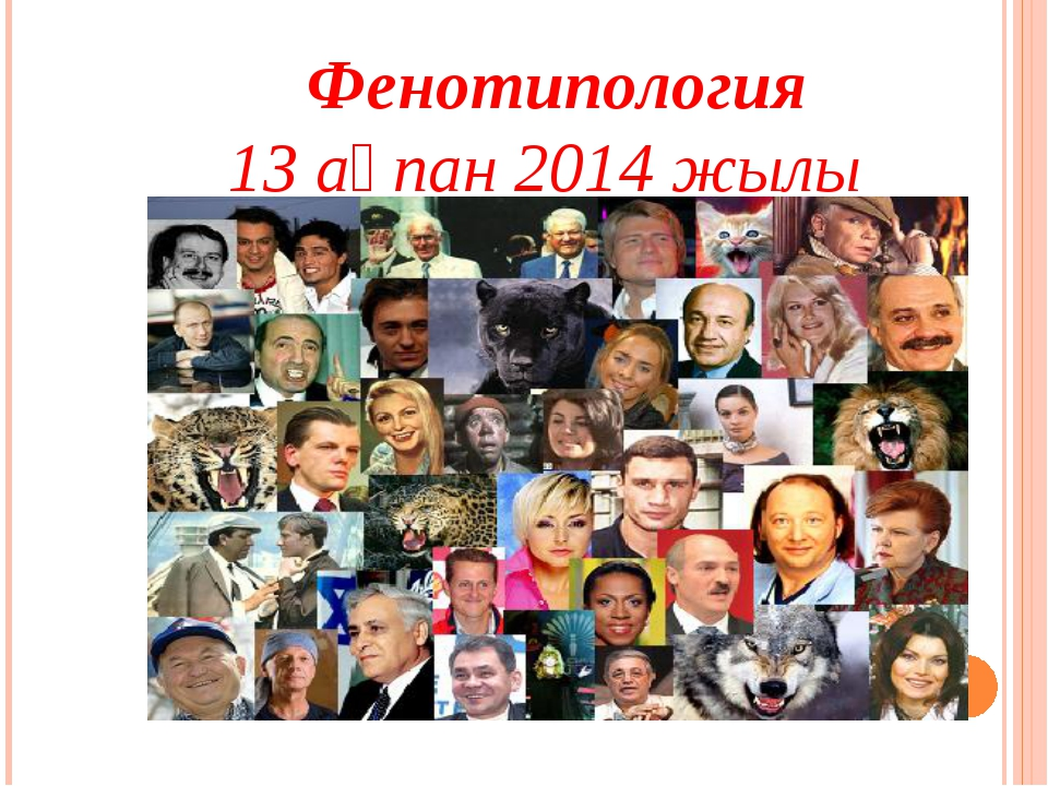 Фенотипология 13 ақпан 2014 жылы
