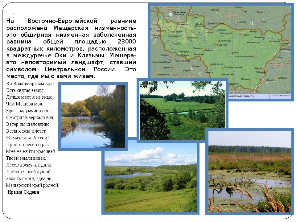 На Восточно-Европейской равнине расположена Мещерская низменность-это обширн...
