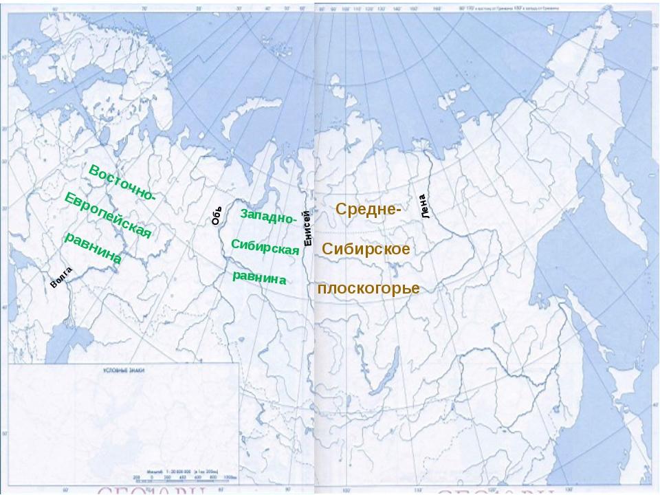Лена Енисей Обь Восточно- Европейская равнина Западно- Сибирская равнина Сред...