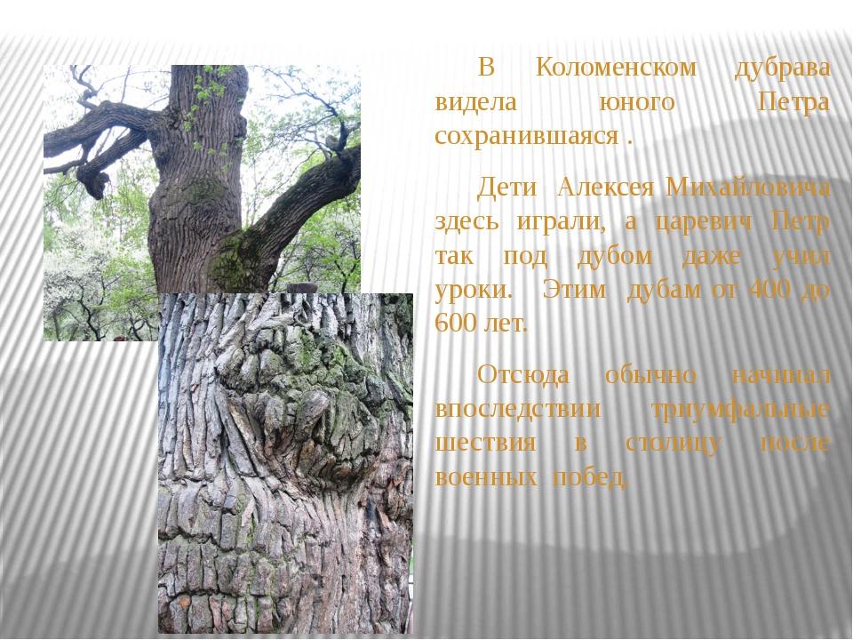 В Коломенском дубрава видела юного Петра сохранившаяся . Дети Алексея Миха...