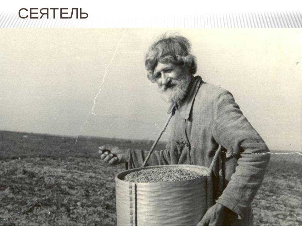СЕЯТЕЛЬ