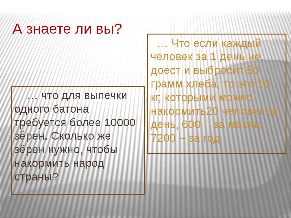 А знаете ли вы? … что для выпечки одного батона требуется более 10000 зёрен....