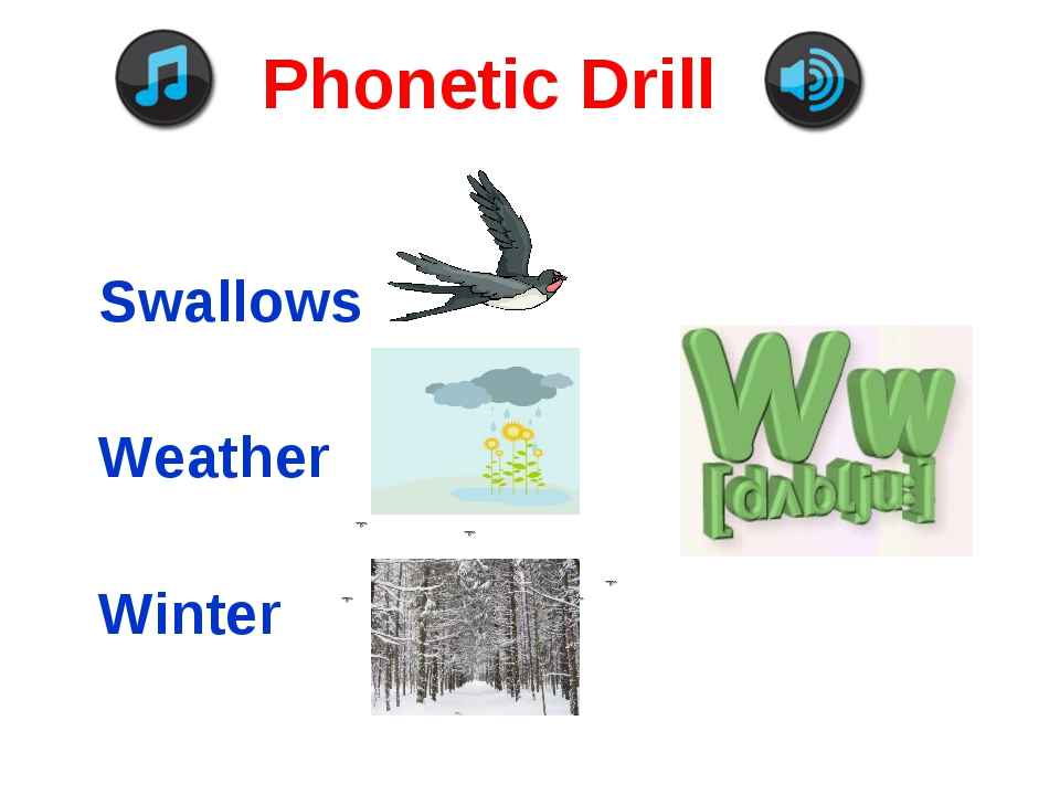Phonetic Drill Swallows Weather Winter