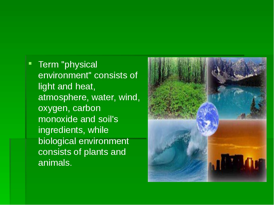 "Term ""physical environment"" consists of light and heat, atmosphere, water, w..."