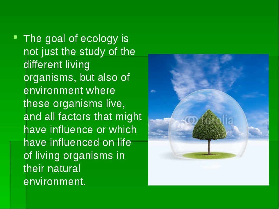 The goal of ecology is not just the study of the different living organisms,...
