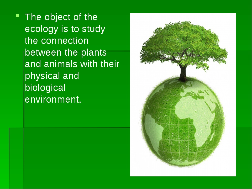 The object of the ecology is to study the connection between the plants and...