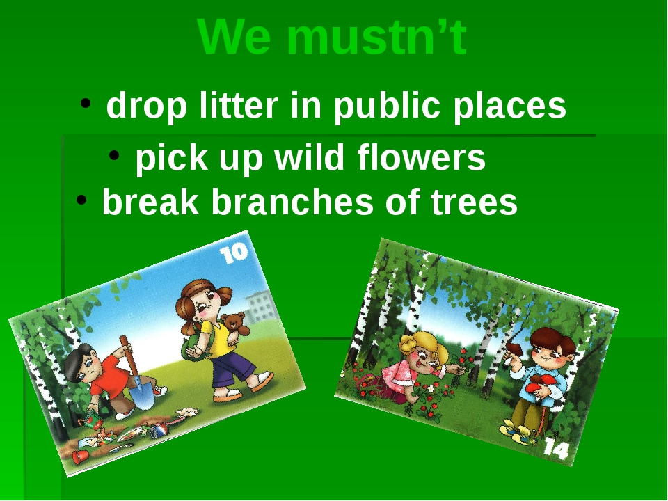 We mustn't drop litter in public places pick up wild flowers break branches...