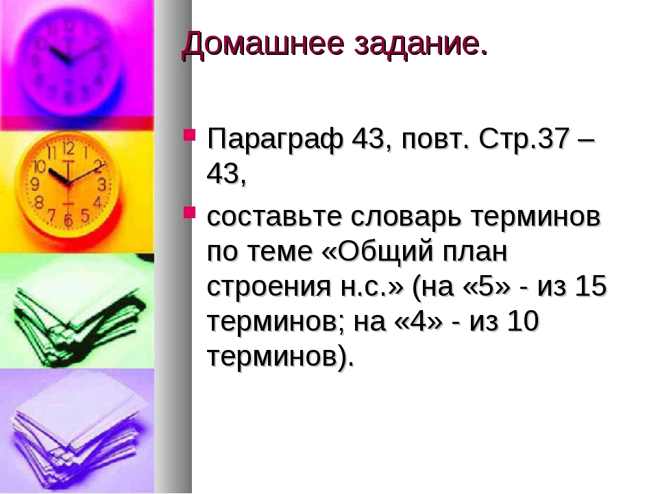Домашнее задание. Параграф 43, повт. Стр.37 – 43, составьте словарь терминов...