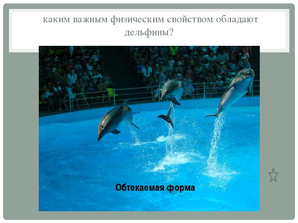 каким важным физическим свойством обладают дельфины? Обтекаемая форма