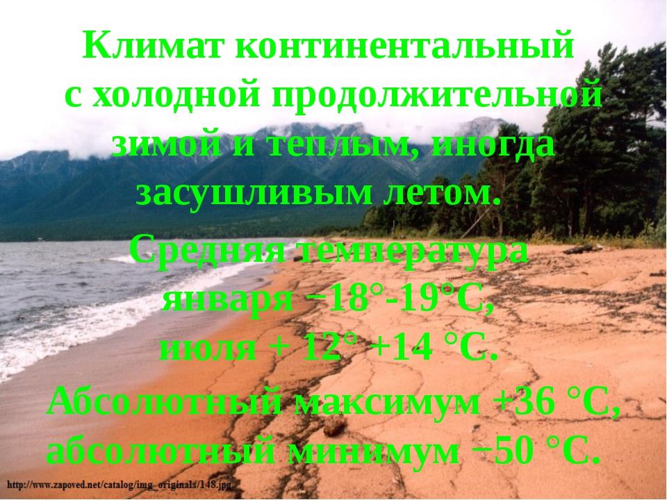 Климат континентальный с холодной продолжительной зимой и теплым, иногда засу...
